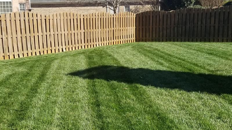 Seasonal Lawn Fertilizing Services