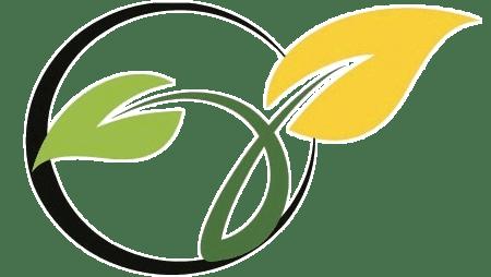 solomon-icon